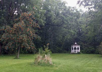 Gazebo in the backyard lawn.